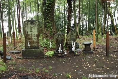 高屋神社(宮崎市村角町橘尊)24