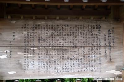 大御神社(日向市伊勢ケ浜)4