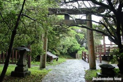 大御神社(日向市伊勢ケ浜)27