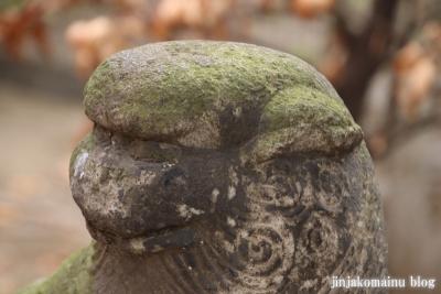 新小岩天祖神社(葛飾区東新小岩)26