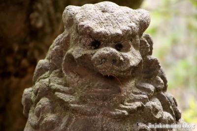 新小岩天祖神社(葛飾区東新小岩)36