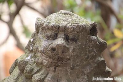 新小岩天祖神社(葛飾区東新小岩)37