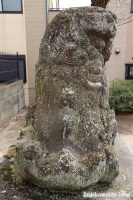 新小岩天祖神社(葛飾区東新小岩)47