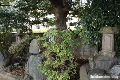 奥戸天祖神社(葛飾区奥戸31