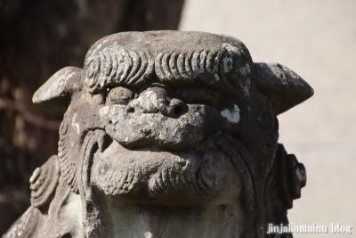上一色天祖神社(江戸川区西小岩)27