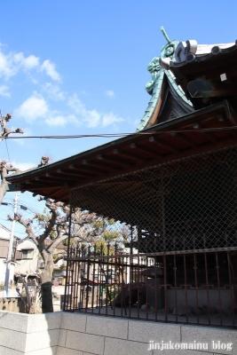 上一色天祖神社(江戸川区西小岩)14
