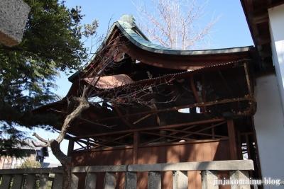 細田神社(葛飾区細田)15