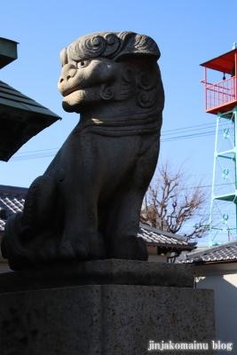高砂天祖神社(葛飾区高砂)12