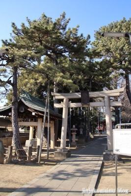 柴又八幡神社(葛飾区柴又)1