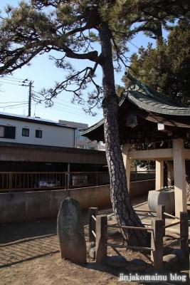 柴又八幡神社(葛飾区柴又)7