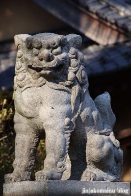 柴又八幡神社(葛飾区柴又)12