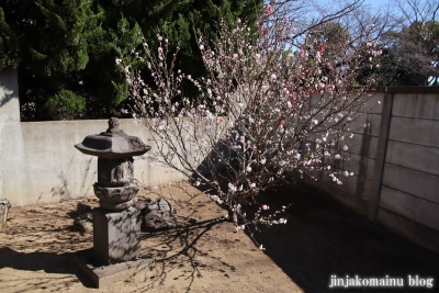 日枝神社(葛飾区東水元)18