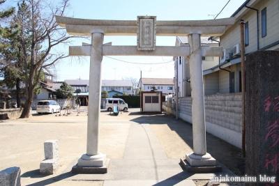 古新田稲荷神社(八潮市古新田)3