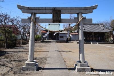 大瀬氷川神社(八潮市大瀬)10