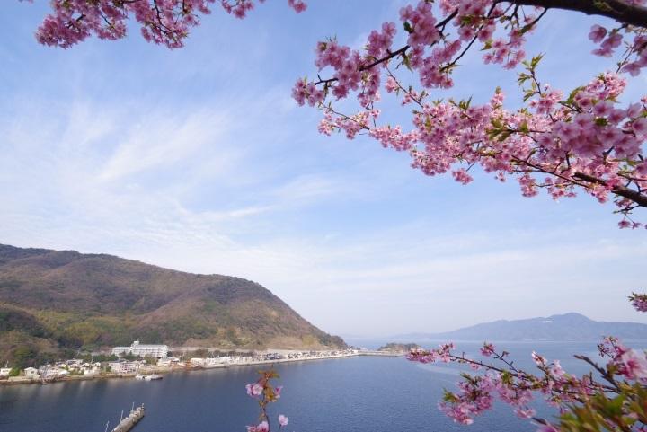 上関城山歴史公園③