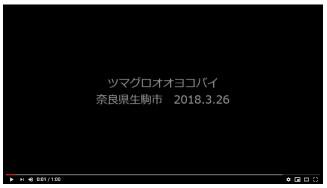 YouTube_20190618191958366.jpg