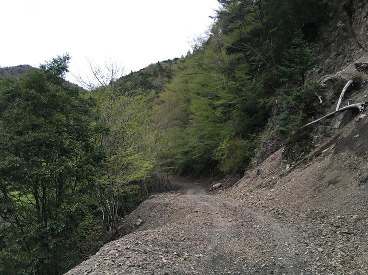 2019鉾尖岳/林道