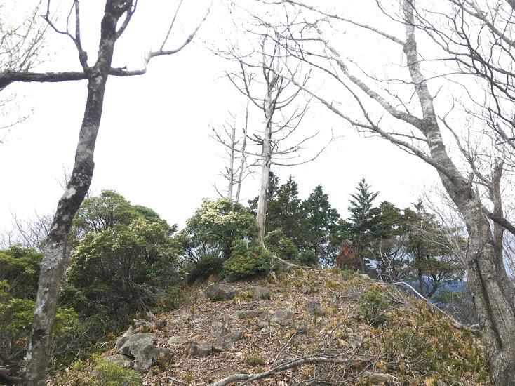 2019鉾尖岳/山頂