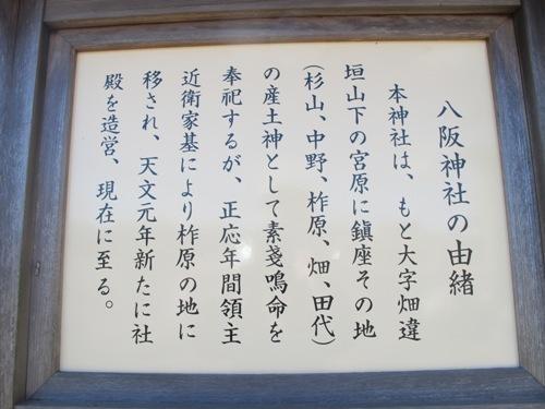 2109-1 紫香楽 (146)