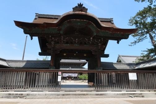 2019-5高田本山 (1)