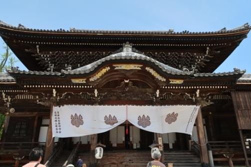2019-5高田本山 (6)