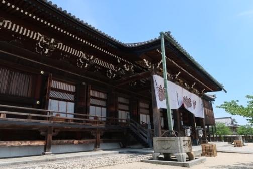 2019-5高田本山 (11)