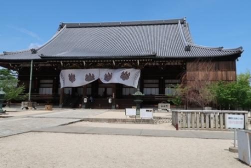 2019-5高田本山 (26)