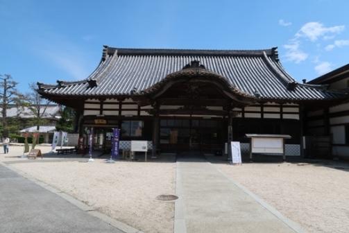 2019-5高田本山 (25)