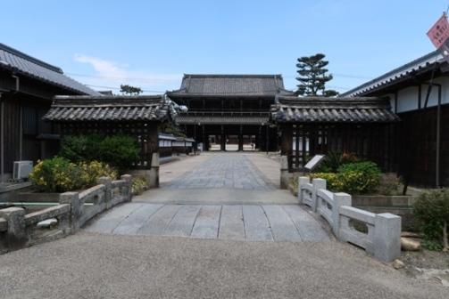 2019-5高田本山 (30)