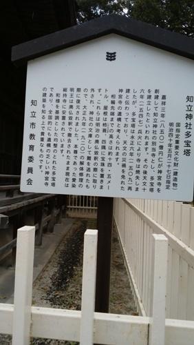 2019-4 知立 (8)
