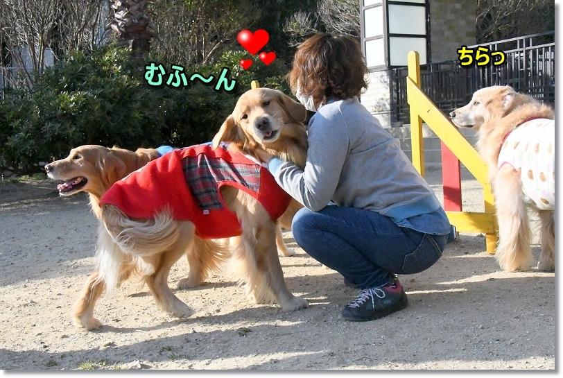 DSC_2268しゅりしゅり~