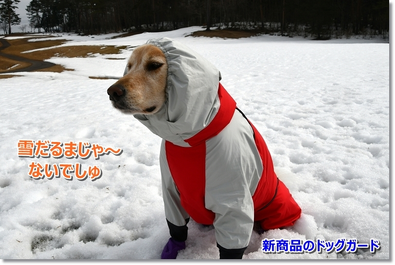 DSC_2900雪だるま?