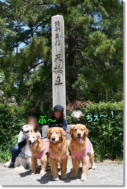 DSC_5218ちぇっ