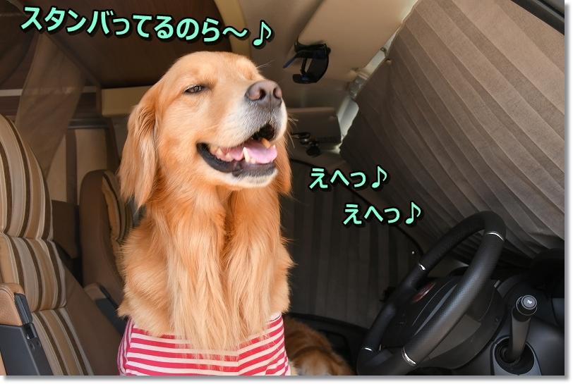 DSC_5427うひひ
