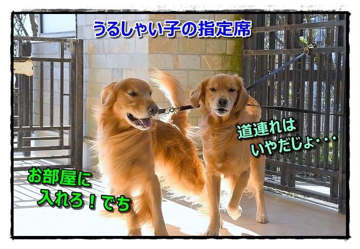 DSC_0477_201812221943529e4[1]
