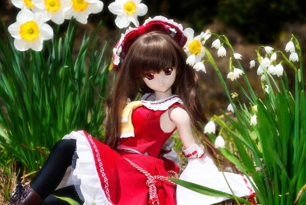 DSC_0449kai.jpg