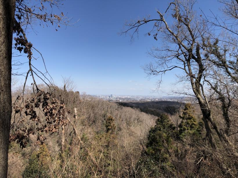 草戸山とりこぼし35