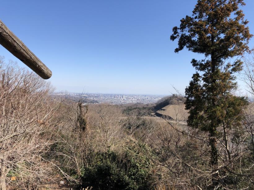 草戸山とりこぼし87