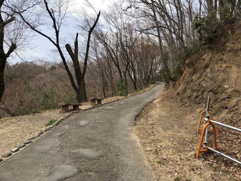 青梅丘陵栗平14