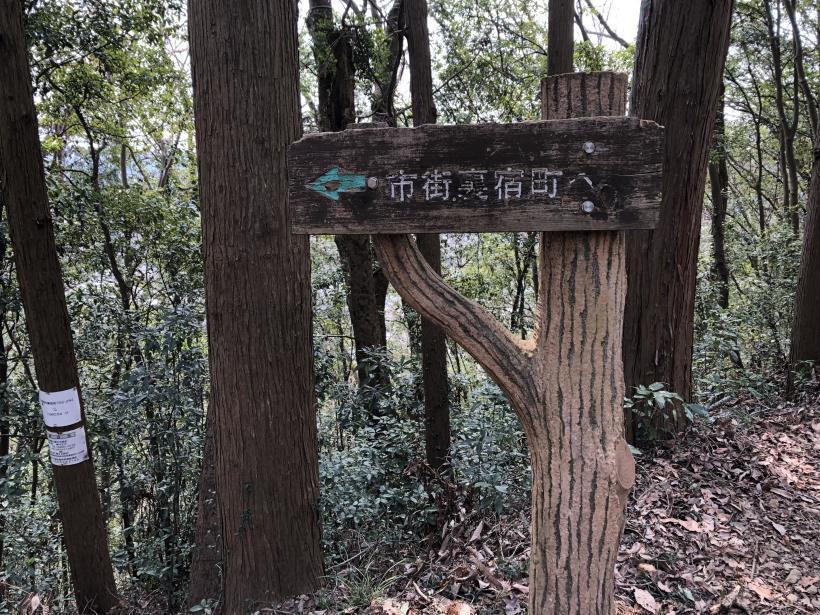 青梅丘陵栗平54