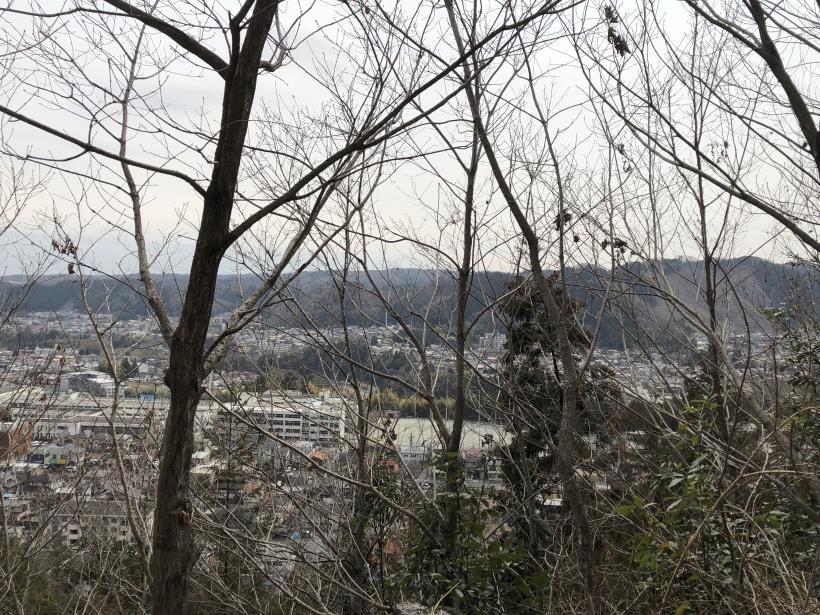 青梅丘陵栗平64