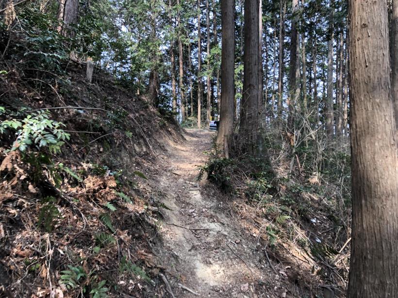 青梅丘陵栗平128
