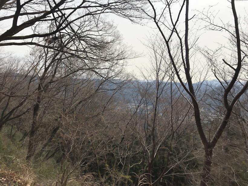 青梅丘陵栗平143
