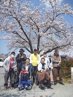 2019お花見5