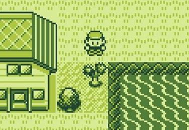 pokemoncut.jpg