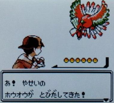 pokemonhouou.jpg
