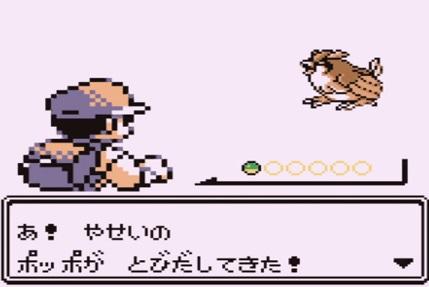 pokemonpoppo.jpg