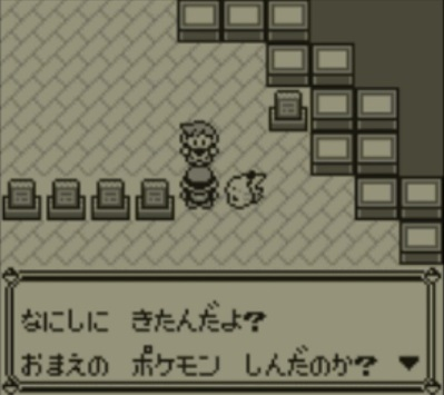 pokemonrival_20190501113347e24.jpg