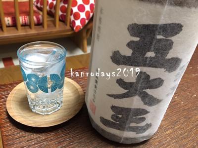 20190310_五大王