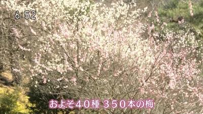 20190308-190932-322.jpg